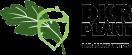 DKR Plant